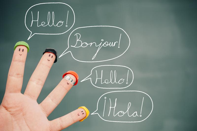 Formazione linguistica