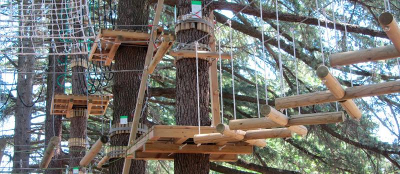 parco avventura sugli alberi