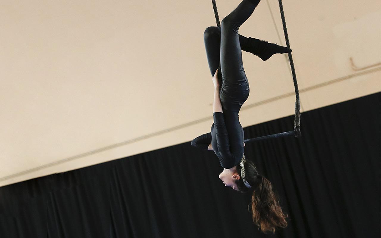 esercizi col trapezio