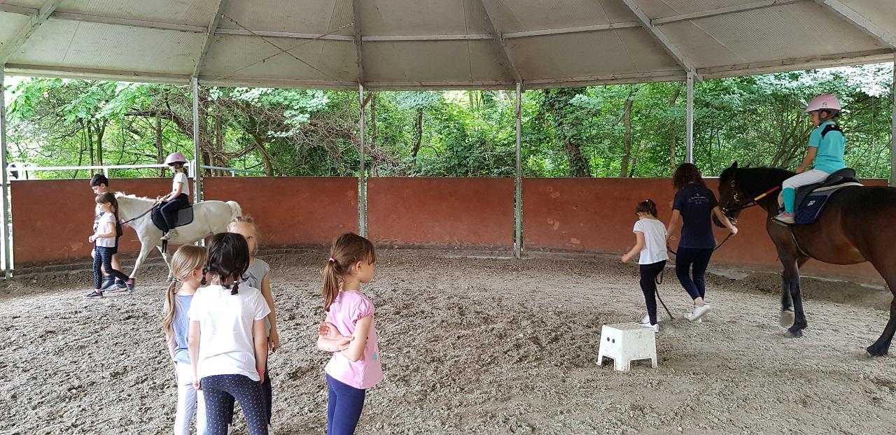 allenamento equitazione